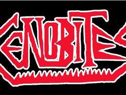 Image for Cenobites