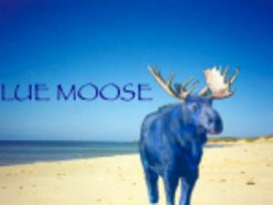 Image for Blue Moose