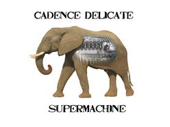 Image for Cadence Delicate