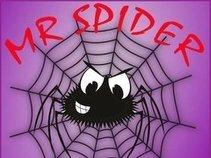 Mr Spider