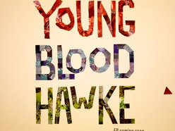 Image for Youngblood Hawke