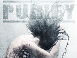 Image for PURIFY