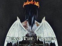 Lead The Fallen