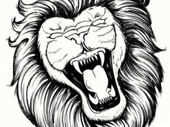 Image for Angry Lions
