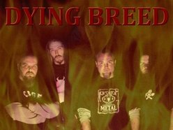 Image for Dying Breed