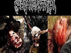 Image for Sacramenstrual