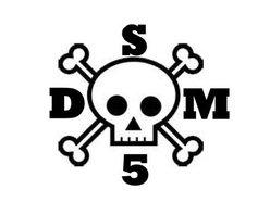 Image for Dsm-5