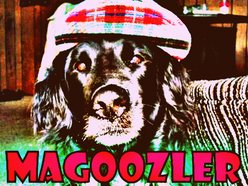 Image for MAGOOZLER