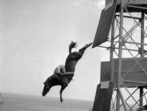 Stunt Pony
