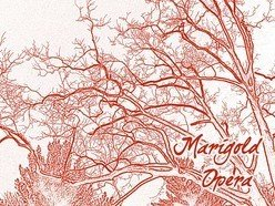 Image for Marigold Opera