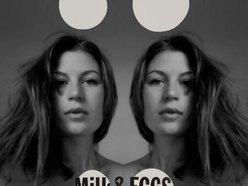 Image for Milk & Eggs