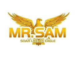Image for Mr Sam