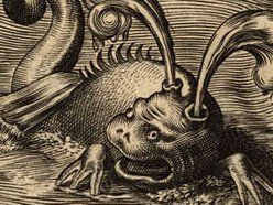 Image for Scrimshander