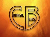 Critical Bliss