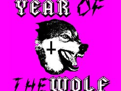 Image for Year of the Wolf