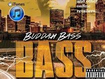Buddah Bass