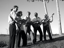 Spare Rib & The Bluegrass Sauce