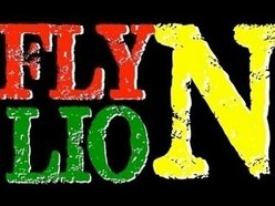 Image for Fly N Lion