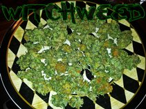 Witchweed