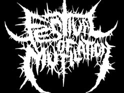 Image for Festival of Mutilation