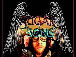 Image for SUGAR BONE