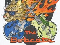 The Bobcats