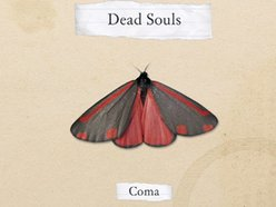 Image for Dead Souls