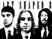 Heart Shaped BOX ( A Nirvana Tribute)