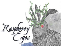 Image for Raspberry Eyes