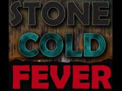 Image for Stone Cold Fever