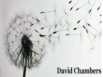 David Chambers - In The Next Life