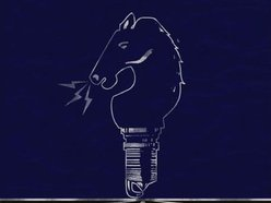 Image for The Small Horse