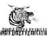 Image for Zombie Zebra Eradication