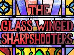 Image for The Glass Winged Sharpshooters