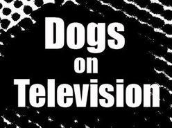 Image for Dogs on Television