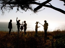 Image for Tumbleweed Wanderers