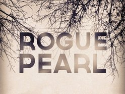 Image for Rogue Pearl