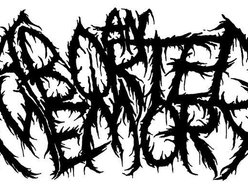 Image for An Aborted Memory