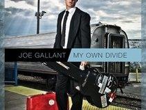 Joe Gallant