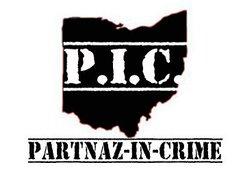 Image for Partnaz in Crime