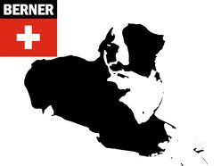 Image for Berner