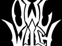 Owl Witch