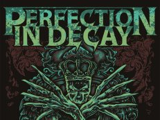 Image for Perfection In Decay