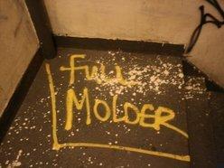 Image for Full Molder