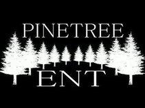 PineTree Ent
