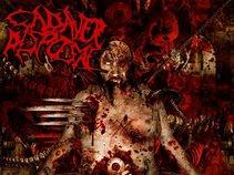 Cadaver Disposal