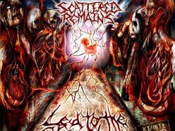 Image for SCATTERED REMAINS