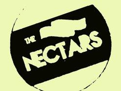 The Nectars
