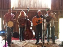 Bug Tussel Bluegrass Band