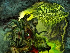 Image for Indecent Excision
